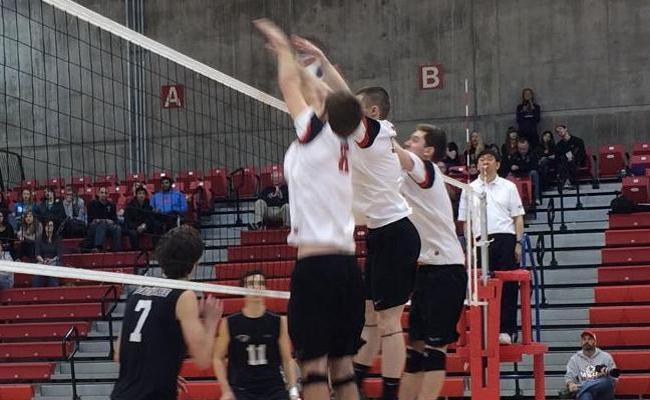 MSOE Men's Volleyball To Be Part Of New Conference