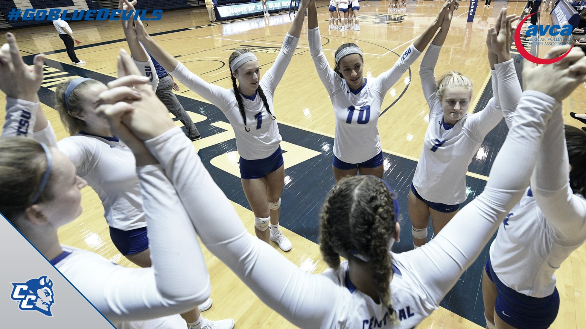 AVCA Recognizes Volleyball for Academic Achievement