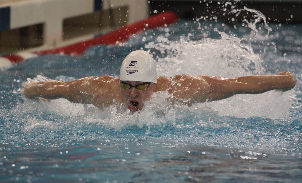 Emory Men's Swimming & Diving Season Preview