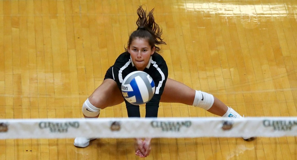 Volleyball Picks Up Wins Against Butler & Charlotte
