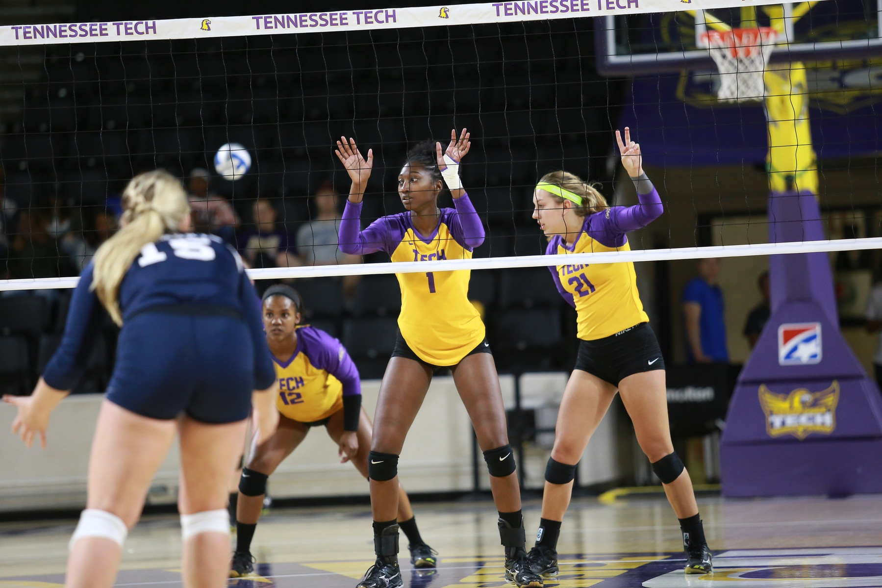 Tech suffers home sweep by Tennessee State