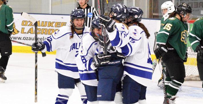 #CUWStatsInfo: A look at the 2013-14 Women's Hockey team