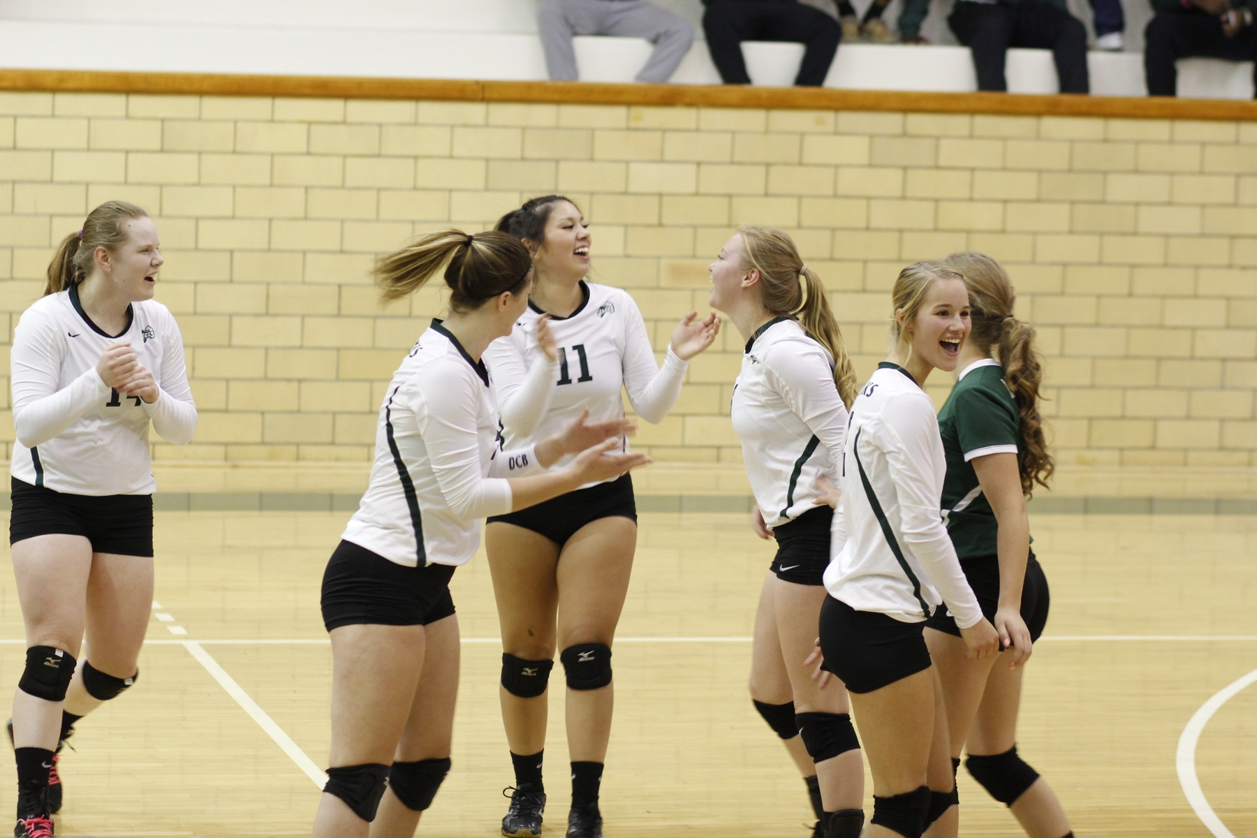 DCB Drops Last Home Game