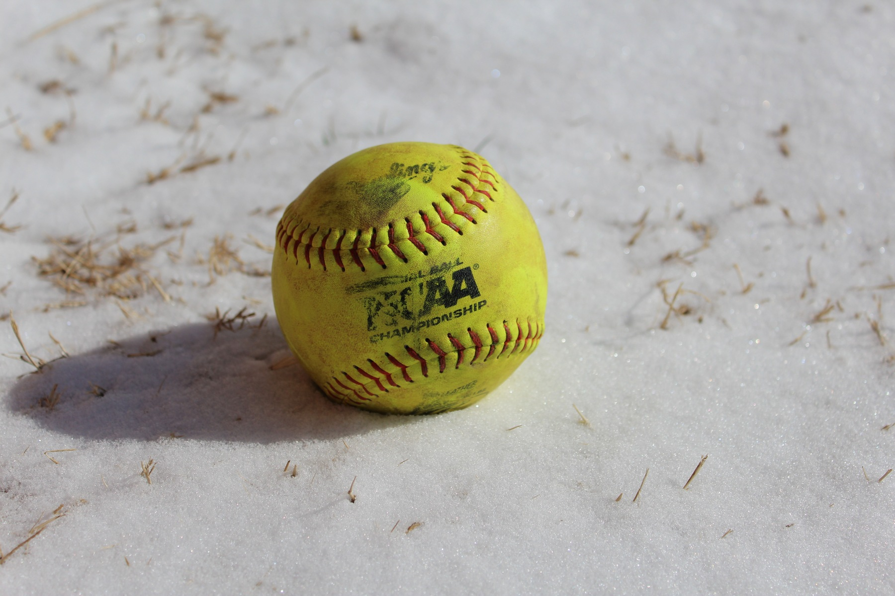 Softball in the snow.
