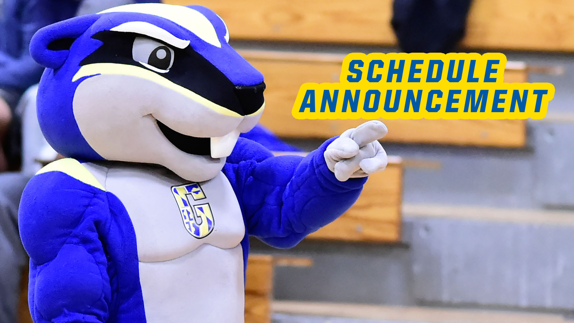 Goucher Announces Time Changes To Home Doubleheader Against Moravian On February 15
