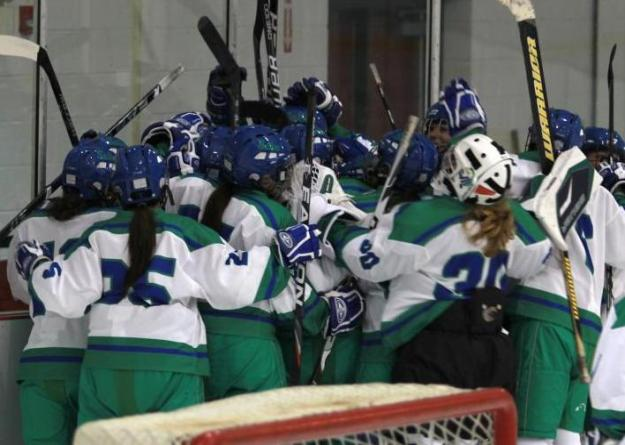 Women's ice hockey places eight on all-academic team