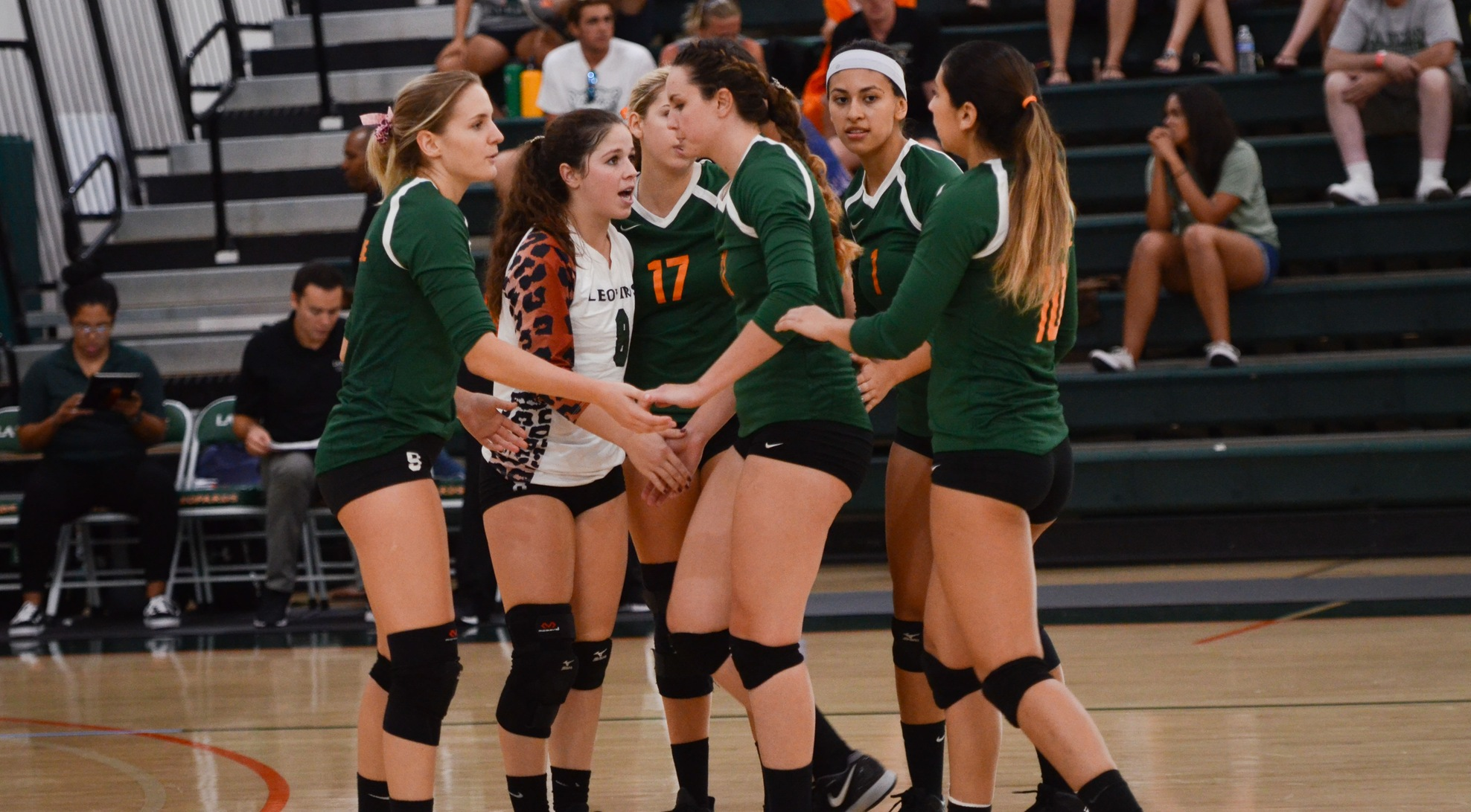 No. 15 Volleyball opens MIT Invite with win over Babson