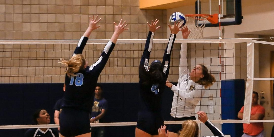 Volleyball Stops by Wentworth Thursday