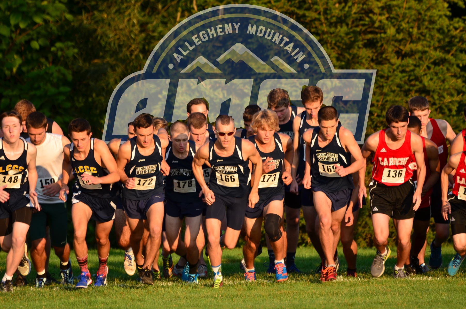 Cross Country Set to Compete at AMCC Championships
