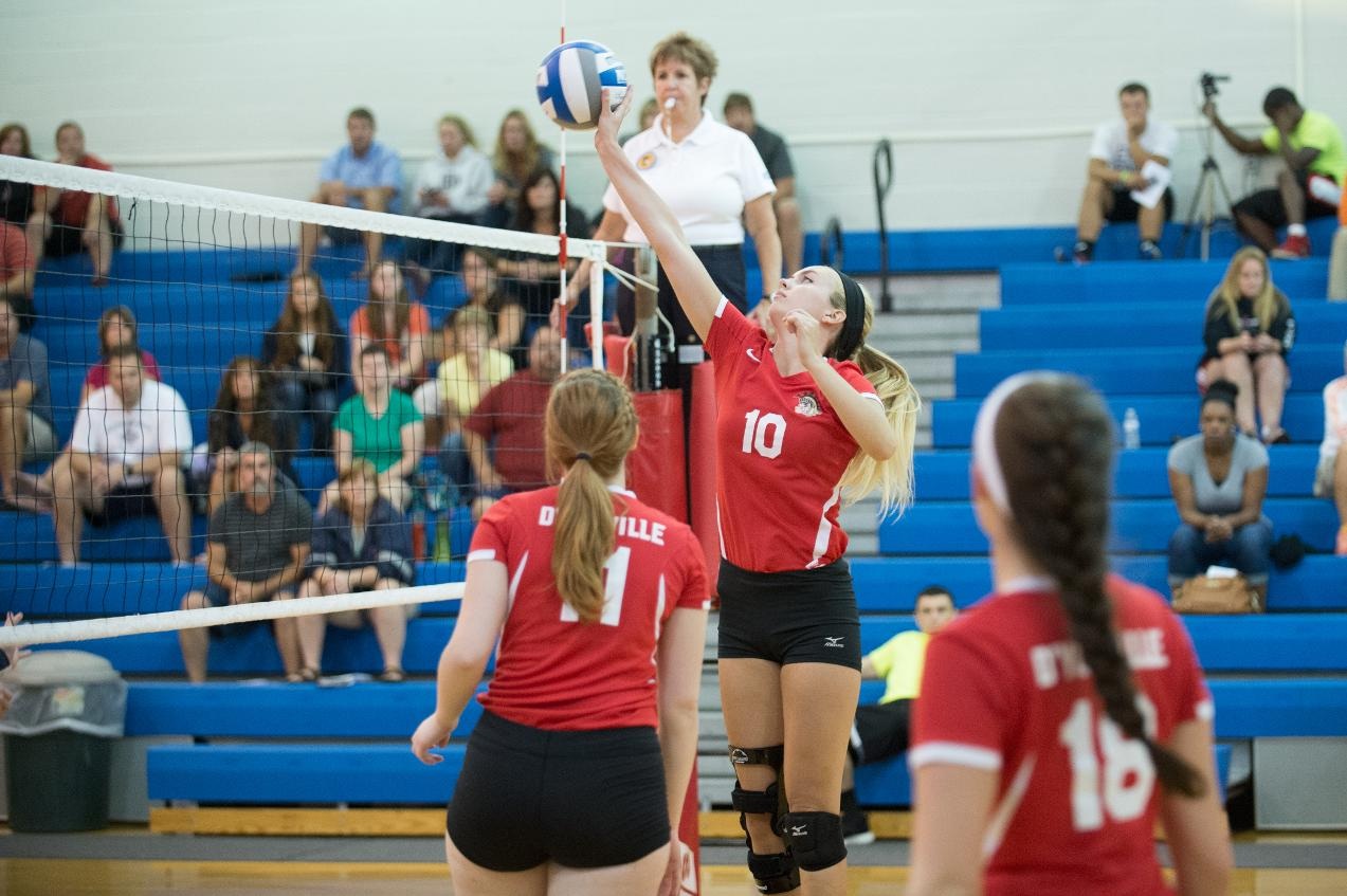 D'Youville Volleyball Splits Saturday