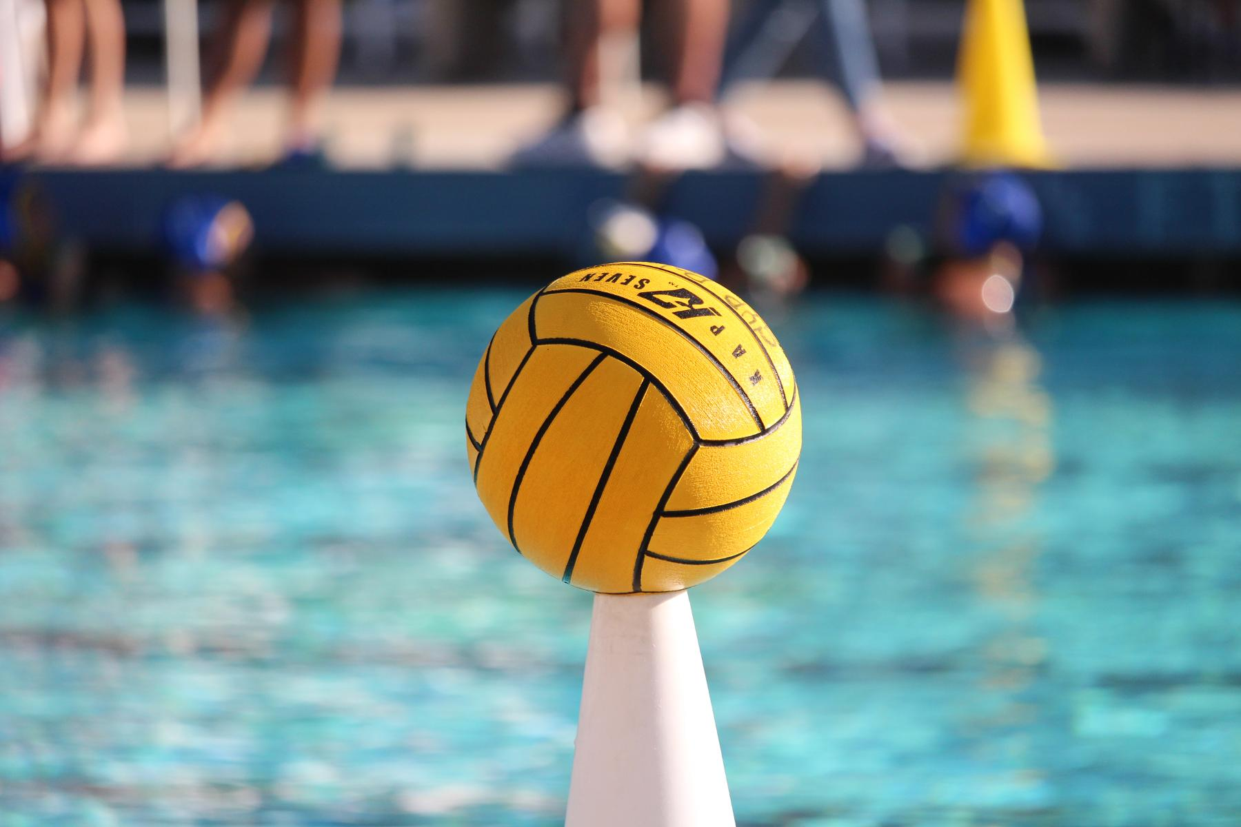 Water Polo Off to Hot Start Under New Leadership