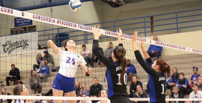 Falcons soar past Eagles in NACC matchup