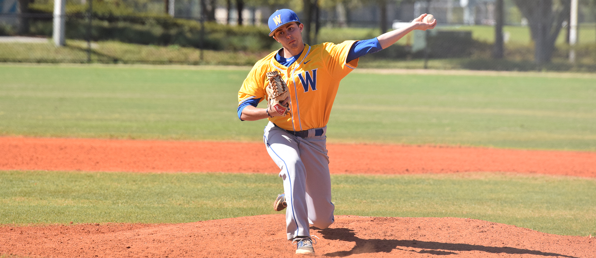 Sophomore left-hander Bob Hamel registered a complete game shutout in game one of Western New England's doubleheader sweep of Eastern Nazarene on Friday.