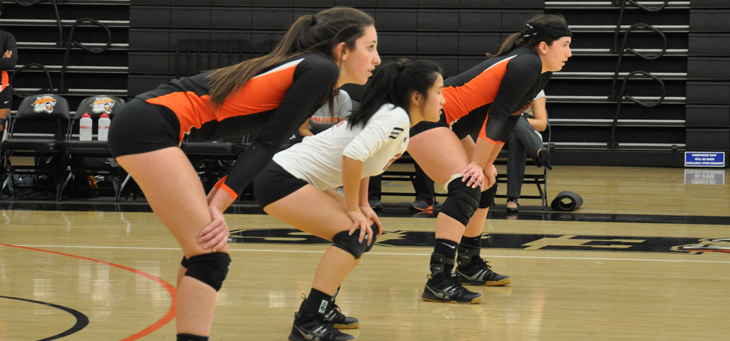 Solid Marks for Beavers in Three-Setter Against Occidental
