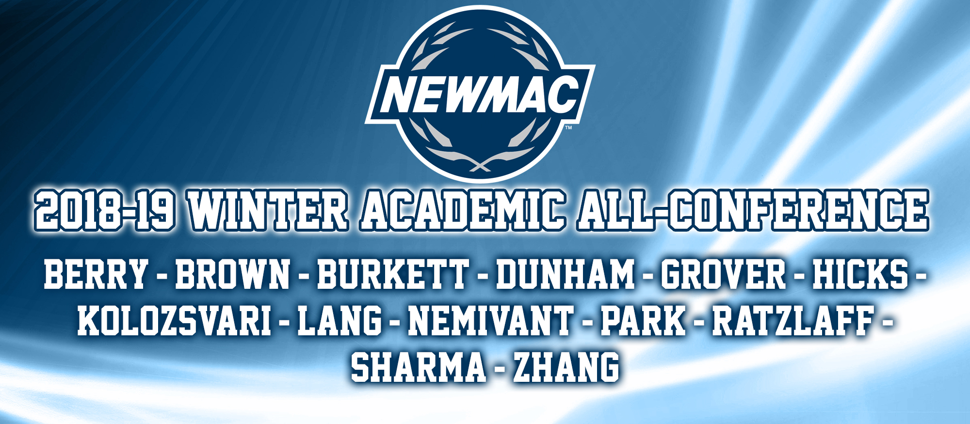 Photo showing the 13 student-athletes selected to the 2018-19 NEWMAC Academic All-Conference Teams for swimming & diving and basketball.