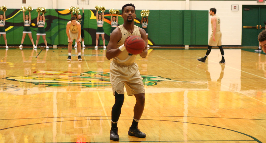 Alex Brown finished with eight points and five assists in Tiffin's 67-60 loss.