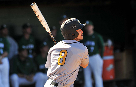 Baseball Splits With Fitchburg State