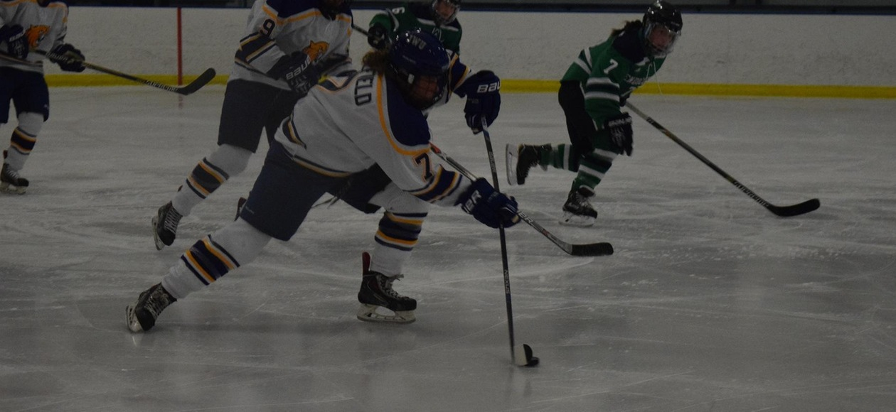 Women's Ice Hockey Loses 4-2 at Franklin Pierce