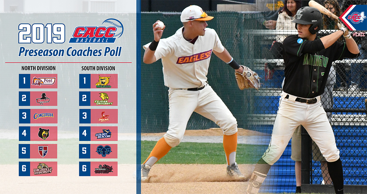 BASEBALL TABBED SECOND IN DIVISION IN 2019 CACC BASEBALL PRESEASON COACHES POLL