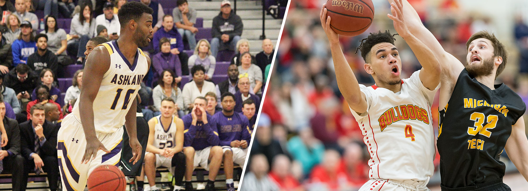 Ashland's Davis, Ferris State's Cushingberry Claim GLIAC Men's Hoops Weekly Honors