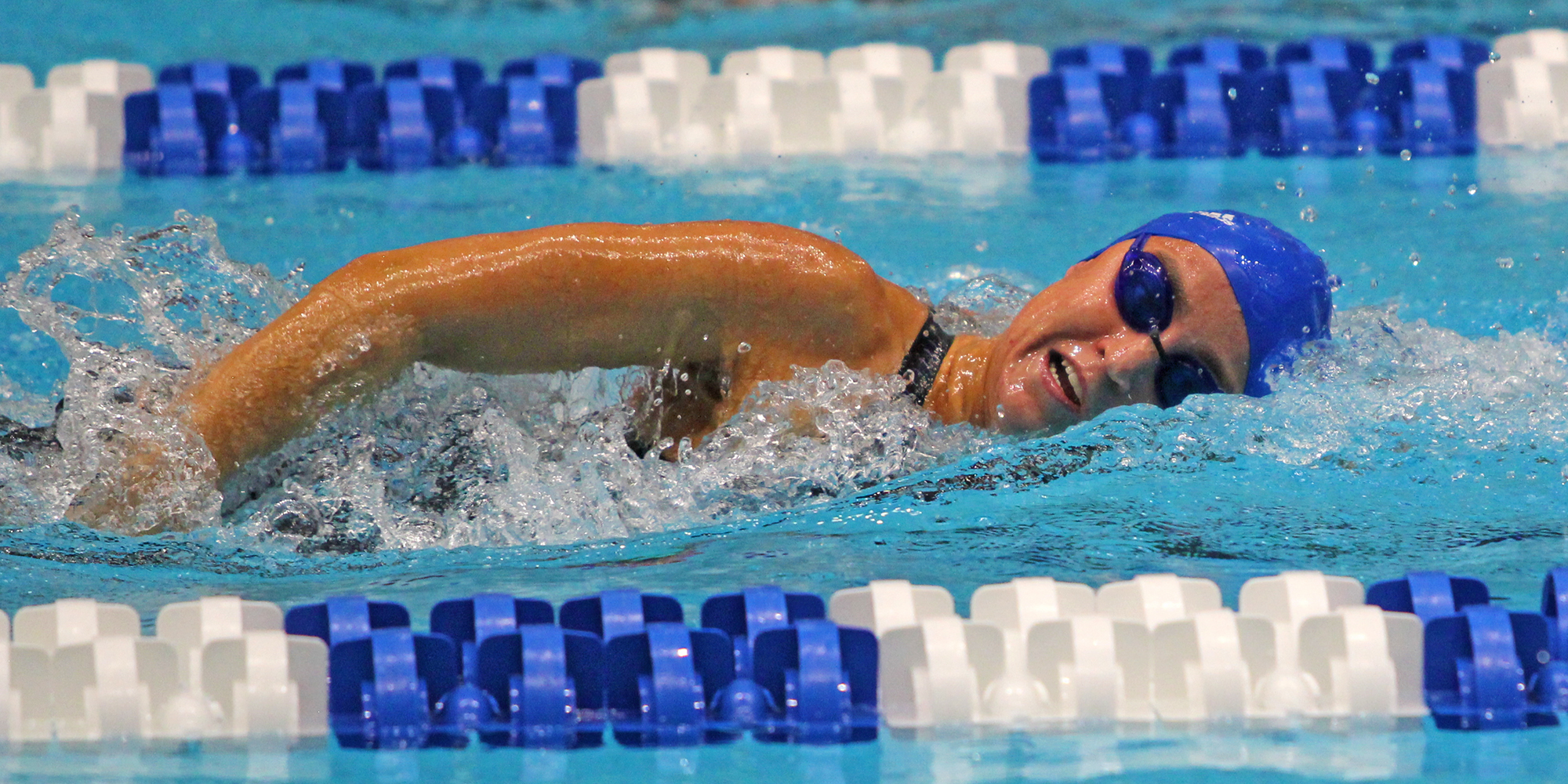 Swimming Begins NCAA National Championship Competition