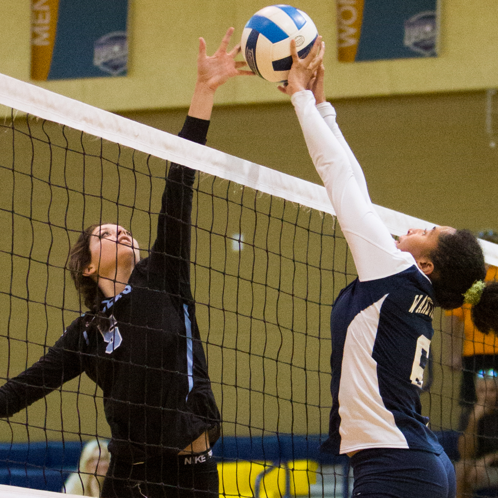 Volleyball Muscles Past Lenoir