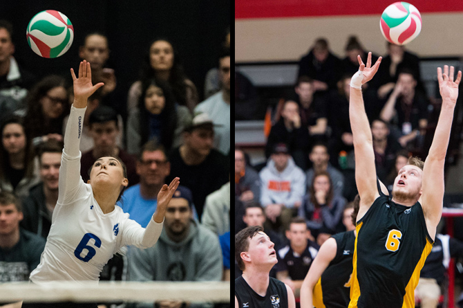 CCAA Volleyball Wildcards for 2018