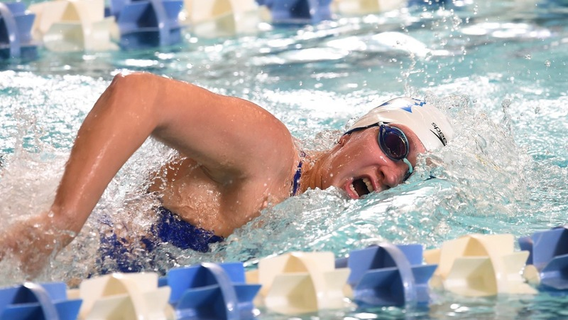 Swimming Wins Meet at LIU on Saturday