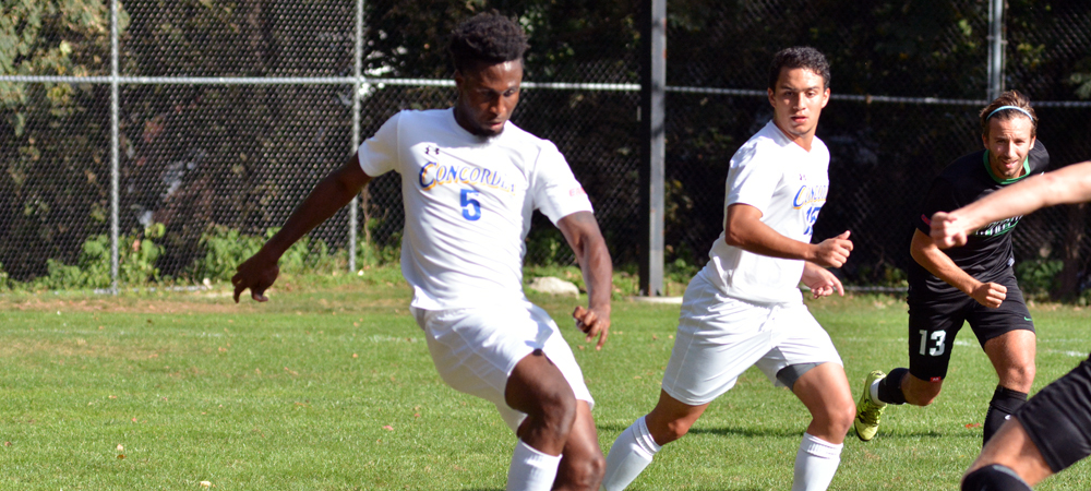 Men's Soccer Ends Season with 1-0 Defeat at Nyack