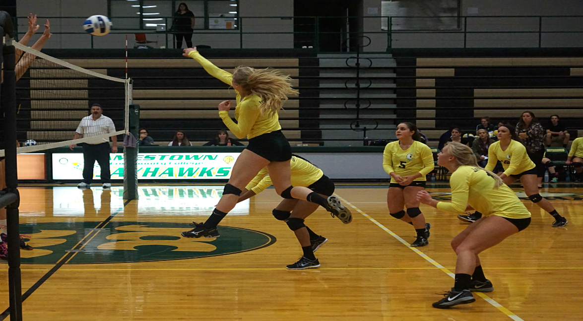 women's volleyball vs Mercyhurst-NE