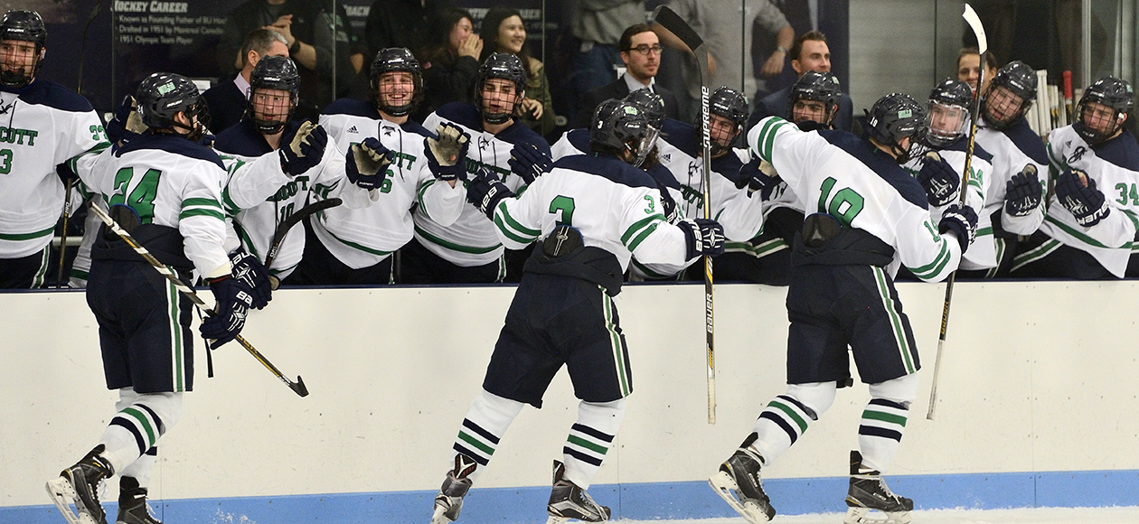 The Endicott men's ice hockey team celebrates with the bench after scoring a goal.