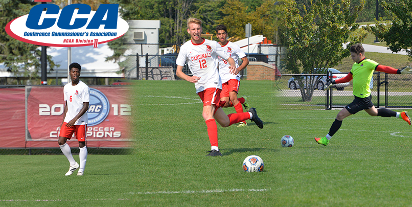 Three Cardinals Earn D2CCA All-Midwest Region Honors