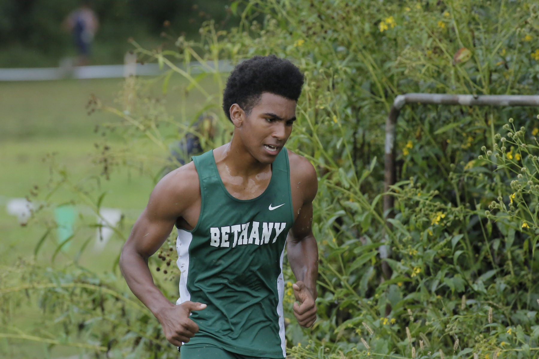 Cross Country Competes at Waynesburg University Invitational