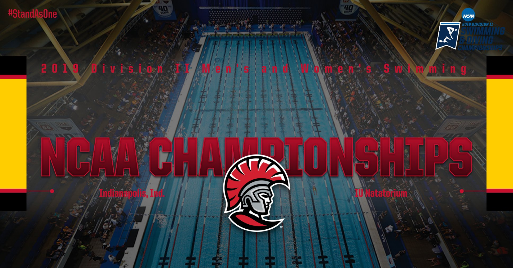 Tampa Swimming Set for NCAA Championships