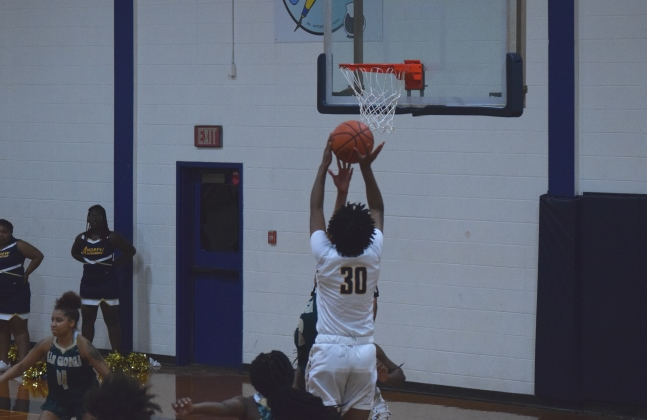 Dawniqua Snead (30) leads Lady Tigers with 15 points.