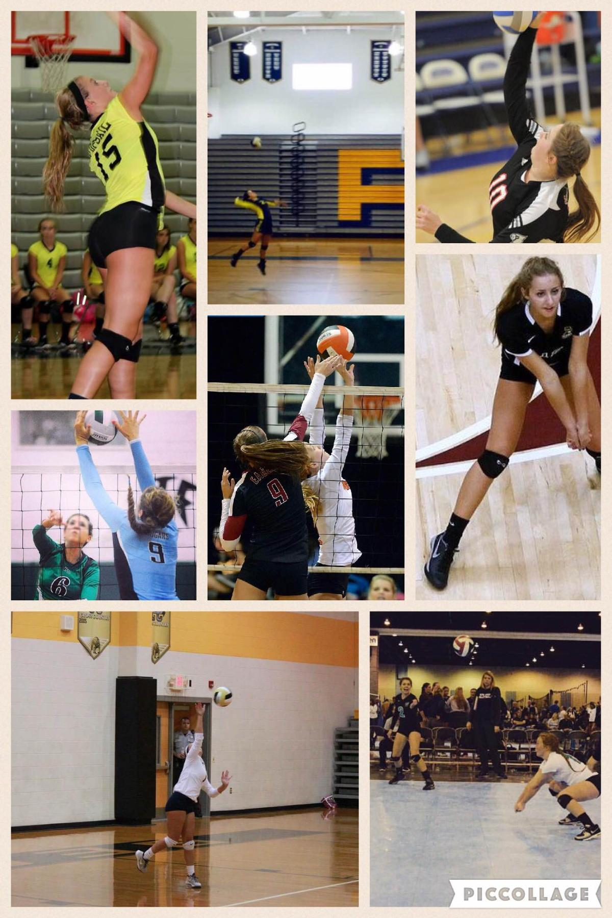 Cape Fear Lady Sea Devil Volleyball's New Signees