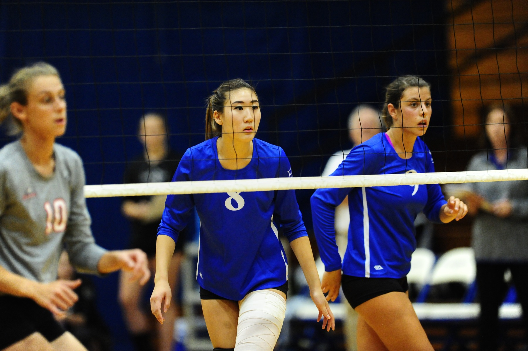 Diplomats Fall to Wolves in Fifth Set