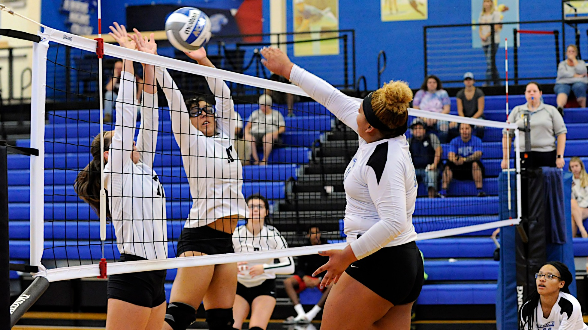 Women's Volleyball Sweeps In-State Rival Saint Joseph's (Conn.)