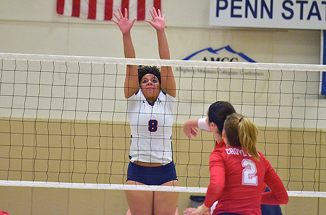 Lions Race Past Franciscan, Penn State Altoona