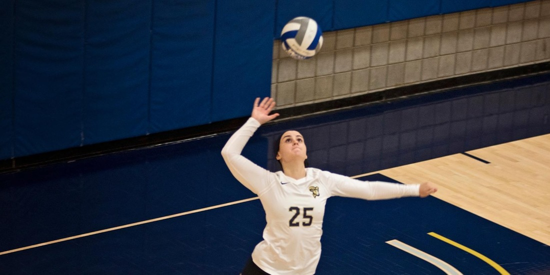 Volleyball Treks to Albertus Magnus for GNAC Tri with Anna Maria