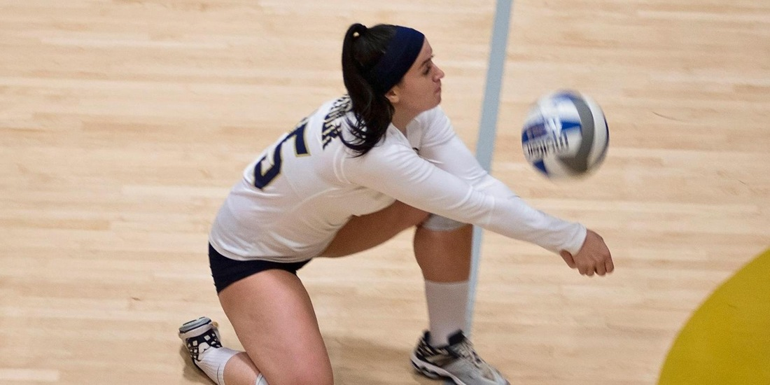 GNAC Road Tri-Match on Docket for Volleyball Saturday