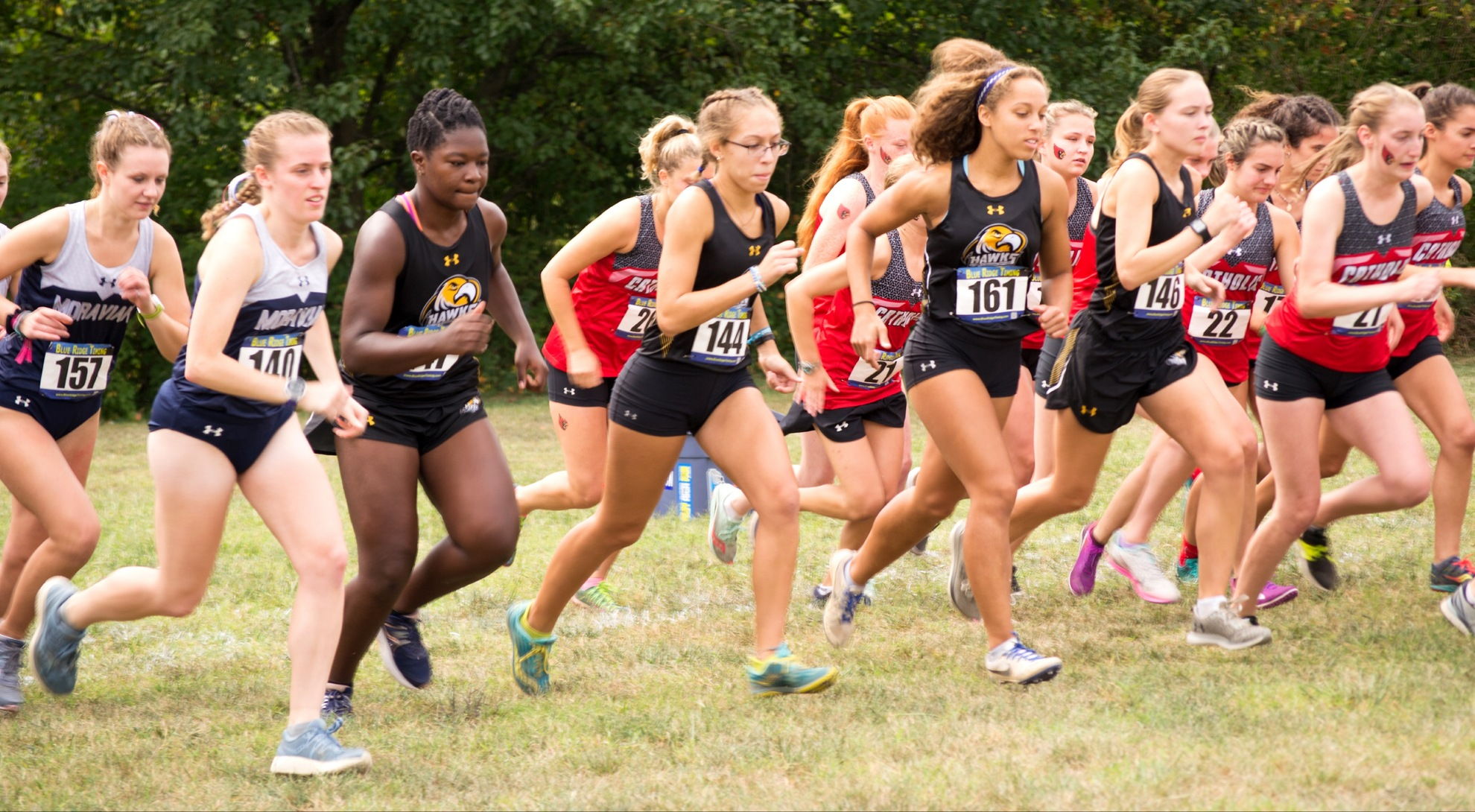 Four Run for Women's Cross Country Team at Cardinal Classic