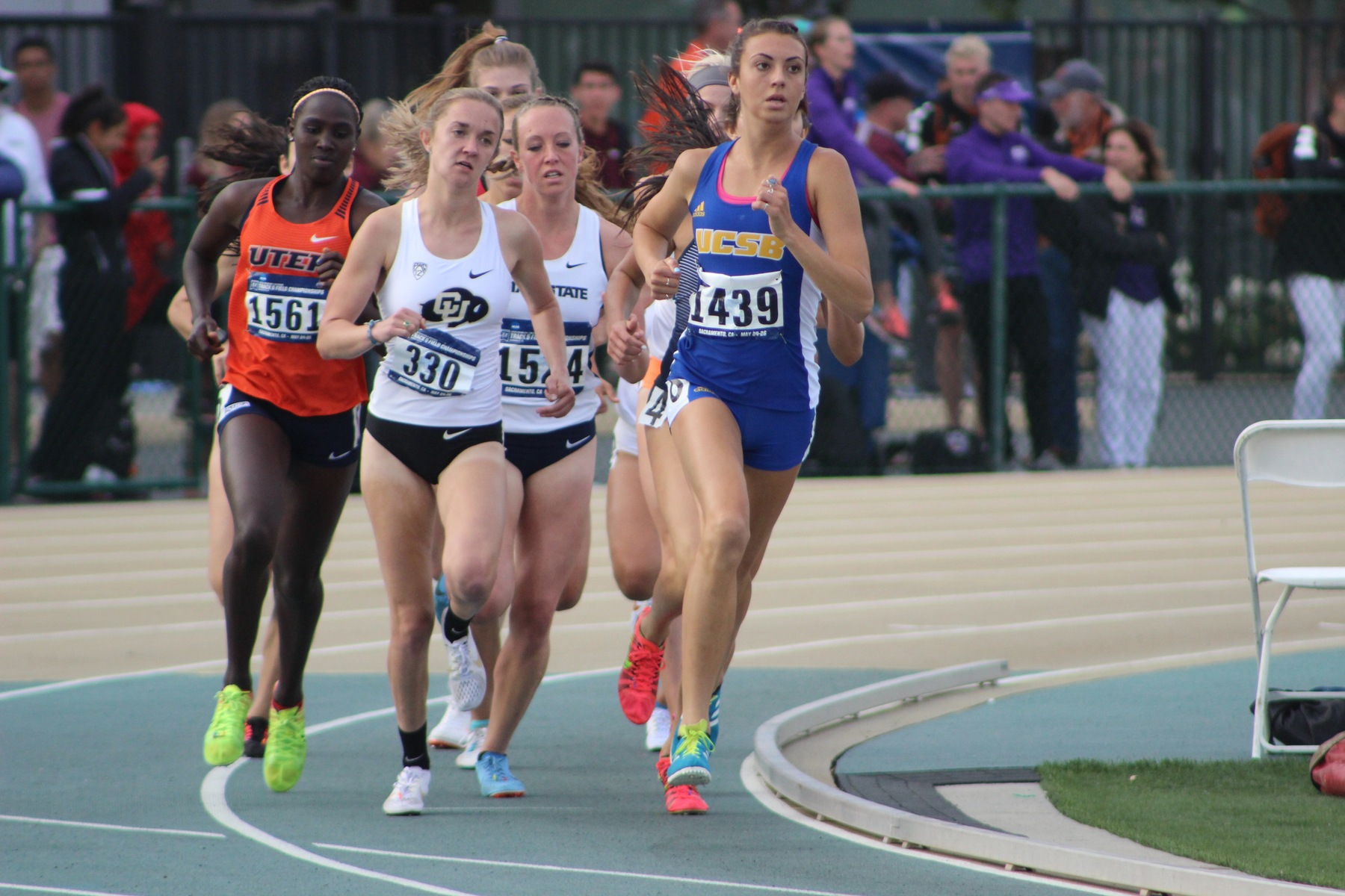 Hinkle, Bender, Tarr Earn USTFCCCA All-Academic Individual Honors