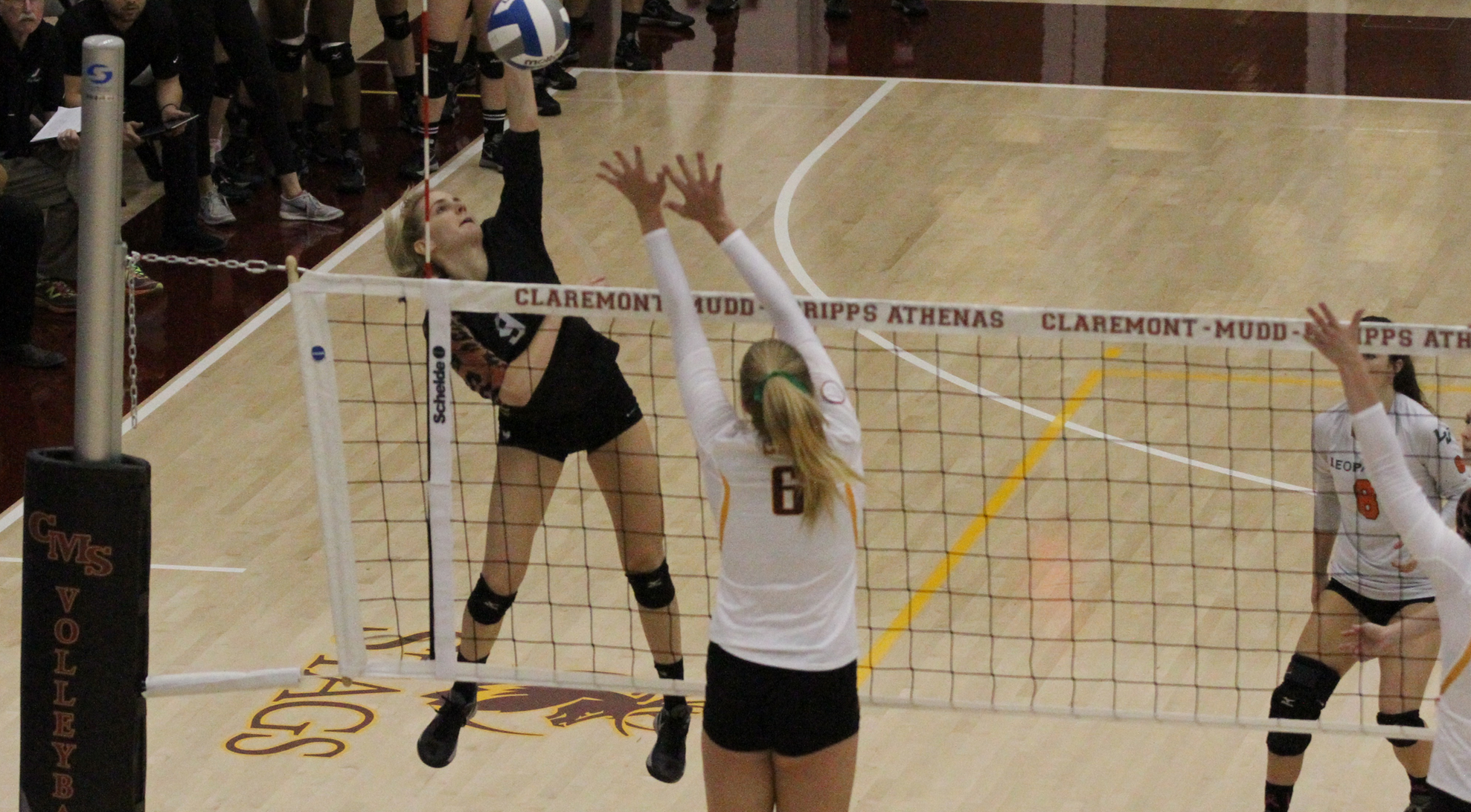 No. 19 Volleyball falls to No. 4 Claremont-Mudd-Scripps, waits for Selection Show