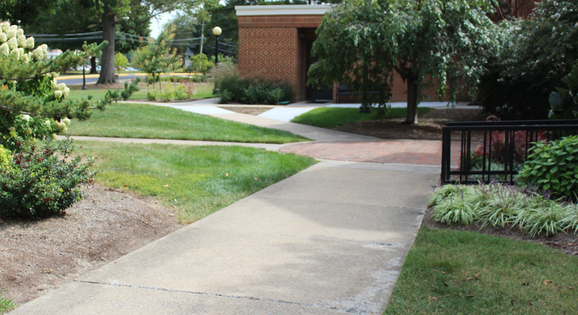 sidewalk leading to Nininger Hall and pool